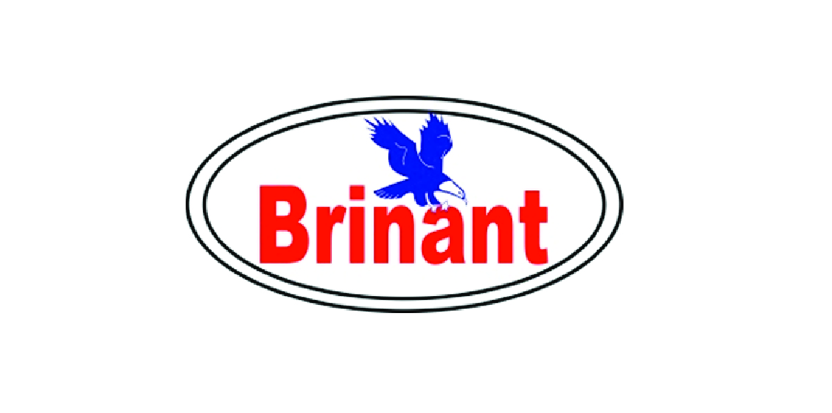 Brinant Security App